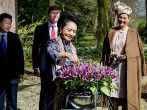 【3】。。当地时间2014年3月23日,荷兰利瑟,中国国家主席习近平夫人彭丽媛(前)给郁金香花施洗礼,荷兰国王与王后为其鼓掌;郁金香为荷兰国花。
